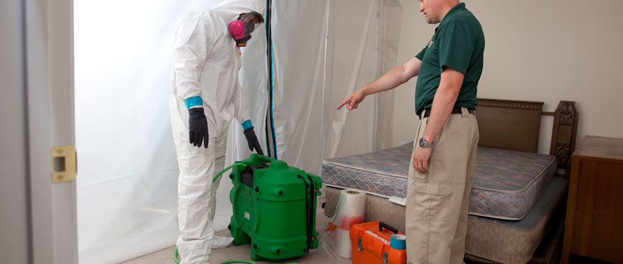 Spartanburg, SC mold removal process